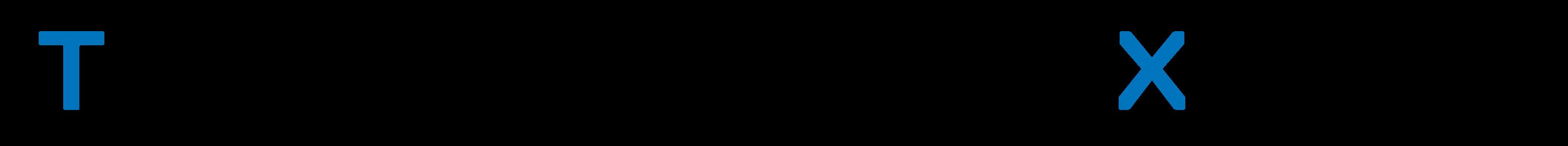 Transformation Experts Logo